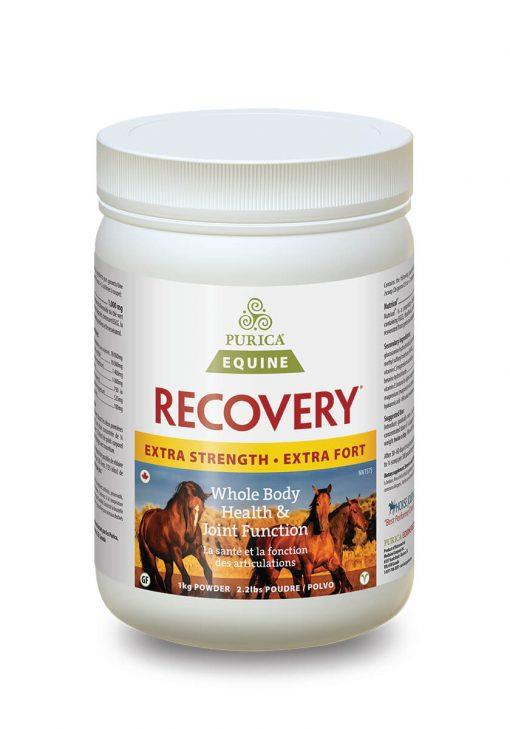 Recovery EQ - Extra Strength