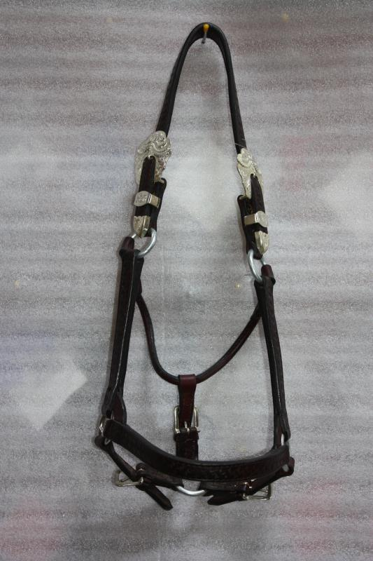 Dale Chavez Show Halter - Yearling