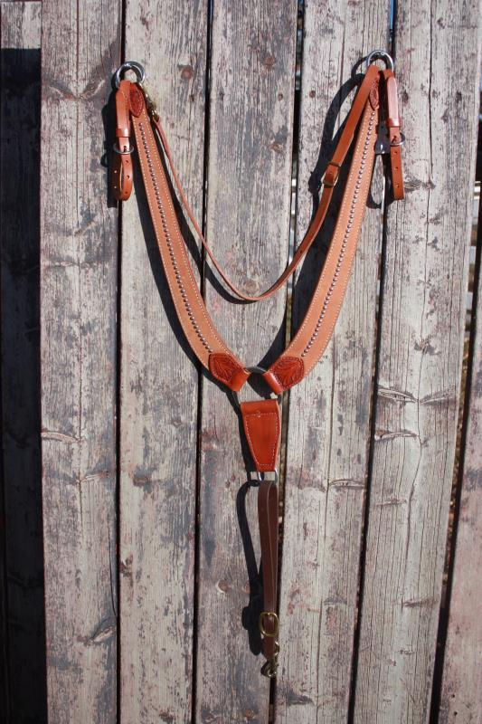 Pulling Collar with Dots and Whither Strap