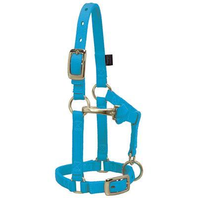 Weaver Nylon Miniature Horse Adjustable Halter